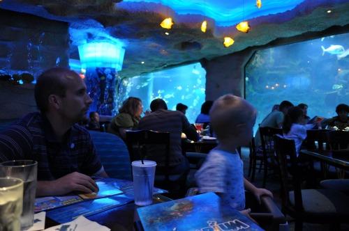 Aquarium Restaruant And Downtown Aquarium In Houston