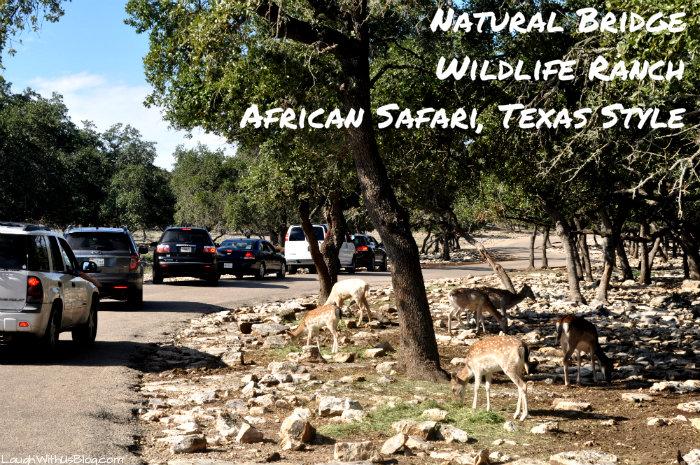 Natural Bridge African Safari