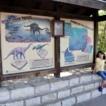 Dinosaur Valley State Park Glen Rose, TX