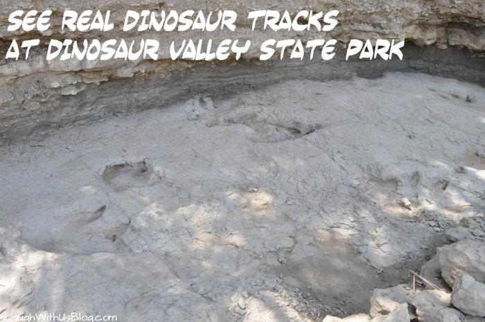 See real dinosaur tracks at Dinosaur Valley State Park