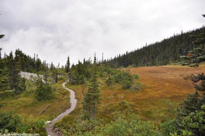 Red Meadow by Upper Dewey Lake