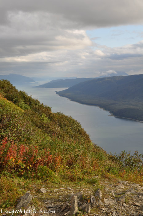 View from Mount Roberts