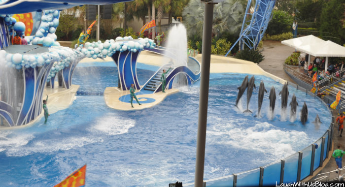 Blue Horizons Dolphin Show Sea World Orlando #ad