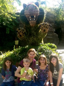 Top 3 Things I Love about Busch Gardens Tampa