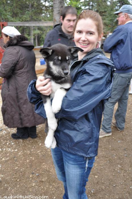 Holding a Husky puppy Husky Homestead