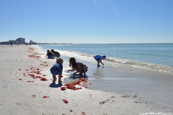 Tampa Florida St. Pete Beach