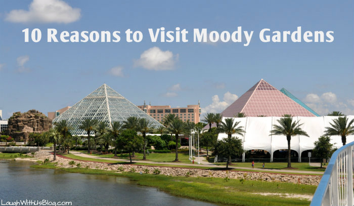 Ten Resons to visit Moody Gardens this summer! #ad