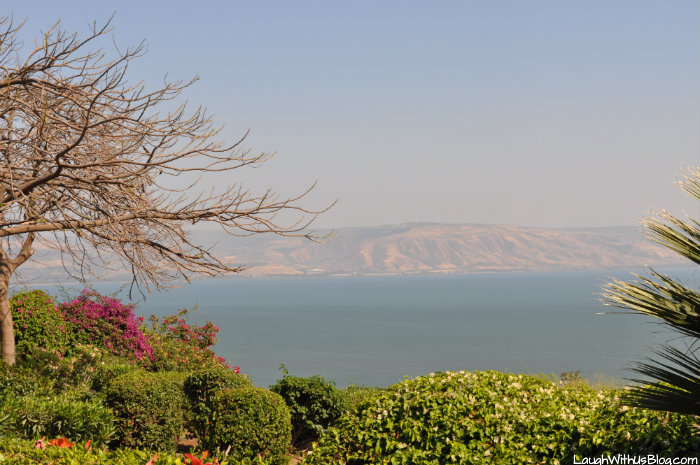 View from Mt Eremos from Sermon on the Mount #IsramIsrael