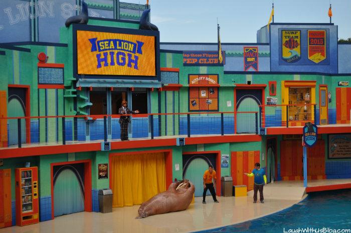 Sea Lion High Walrus #AdventureCon15 #Wildside15