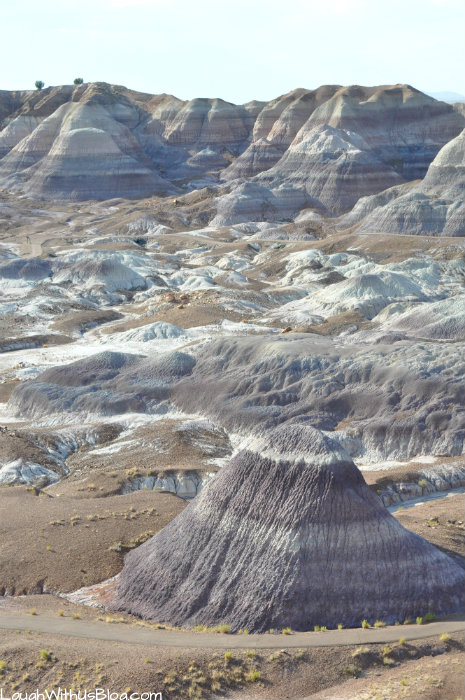 blue-mesa-area-petrified-forest-national-park