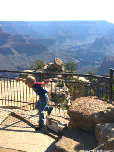 Grand Canyon with Kids: What to Expect