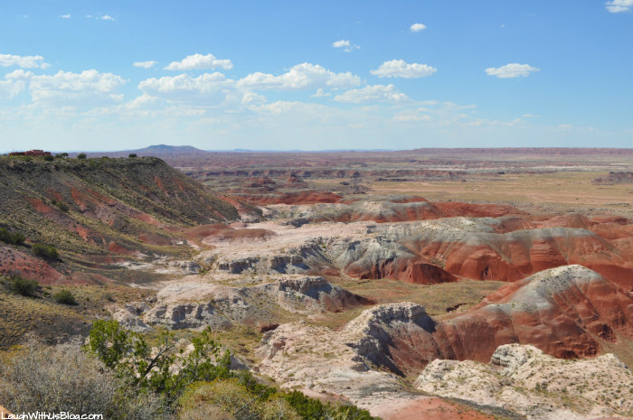 the-beautiful-painted-desert