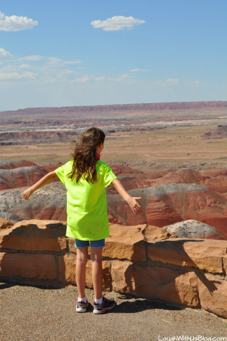 the-painted-desert-i-can-fly