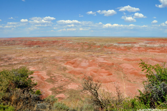 the-painted-desert-national-park