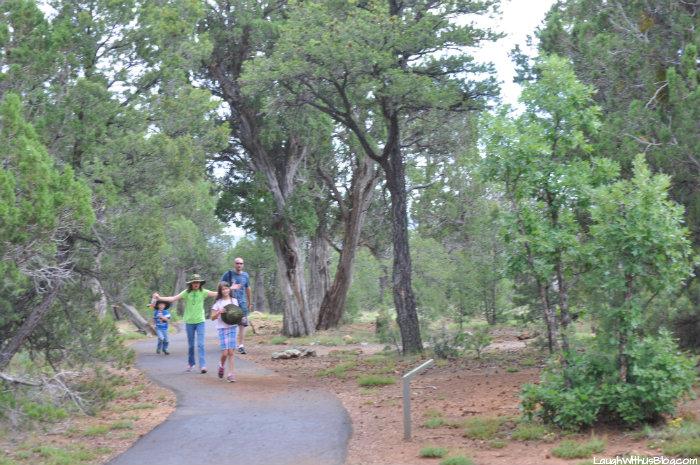 walnut-canyon-rim-trail