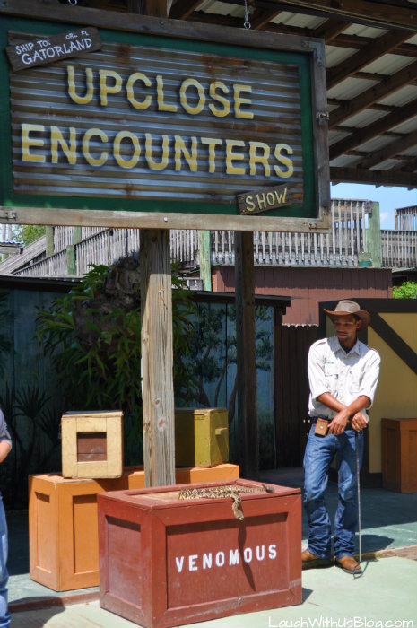 gatorland-up-close-encounters-show