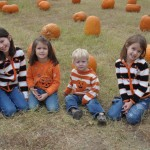 Flower Mound Free Pumpkin Patch 2010