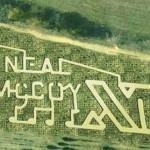 Yesterland Farm and Corn Maze