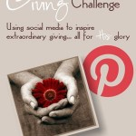 The 30-Day Giving Challenge 2012