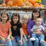 Our visit to Yesterland Farm