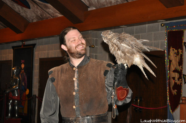 Medieval Times Falconer