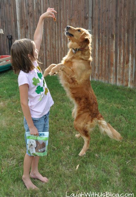 Fun with Nudges dog treats
