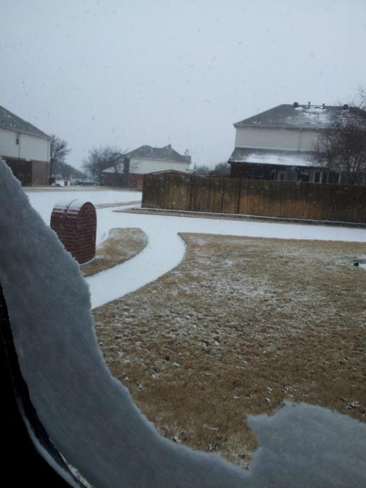 Texas snow 3