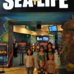 SEA LIFE Aquarium in Grapevine, TX #ad