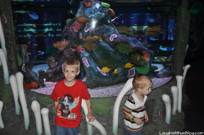 Colorful fish at Sea Life Aquarium
