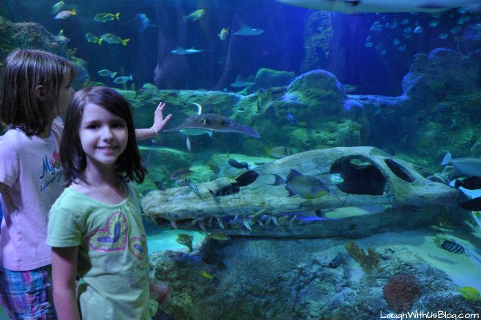 Fun at Sea Life Aquarium