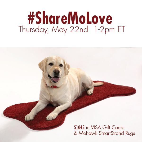 ShareMoLove-Twitter-Party-5-22