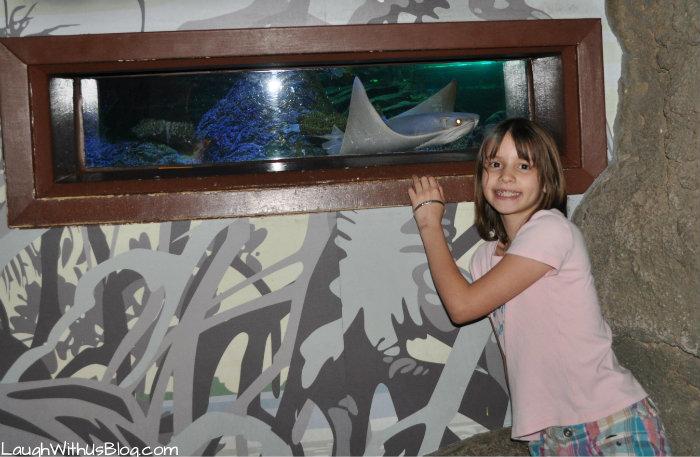 photo with a fish Sea Life Aquarium