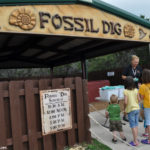 Fossil Dig at Dinosaur World Glen Rose, TX