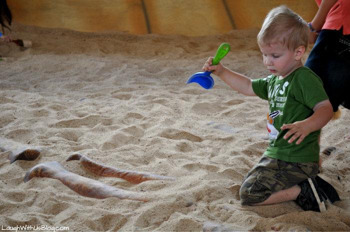 Uncovering bones Dinosaur World #ad