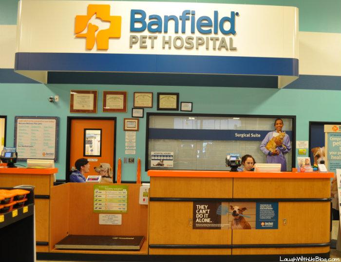 Banfield Pet Hospital® #ad