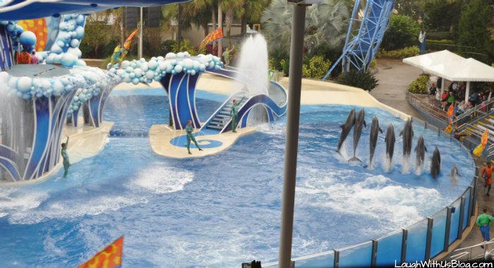 Blue Horizons Dolphin Show Sea World Orlando #ad