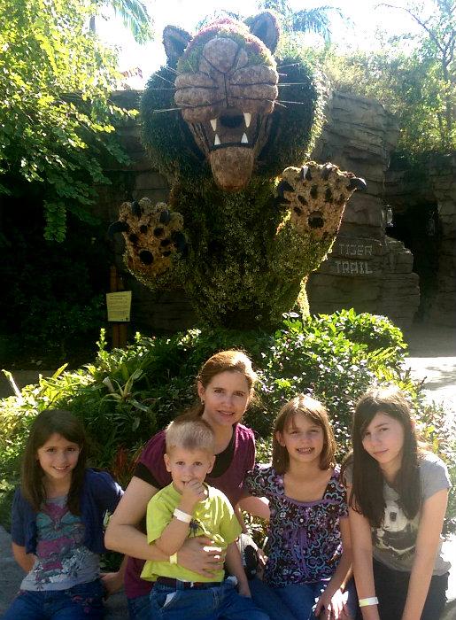 Busch Gardens Tampa #ad