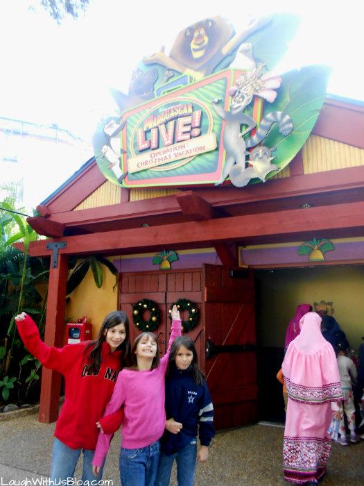 Madagascar Live #ChristmasTown at Busch Gardens #sponsored