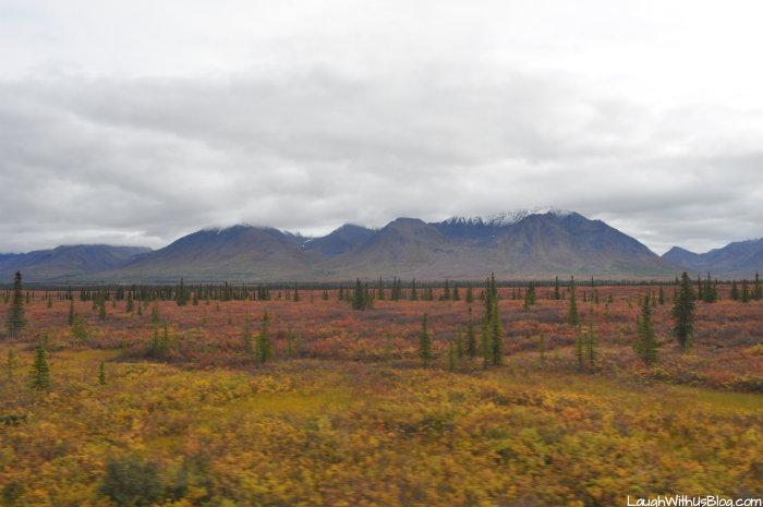 Travel Alaska 1