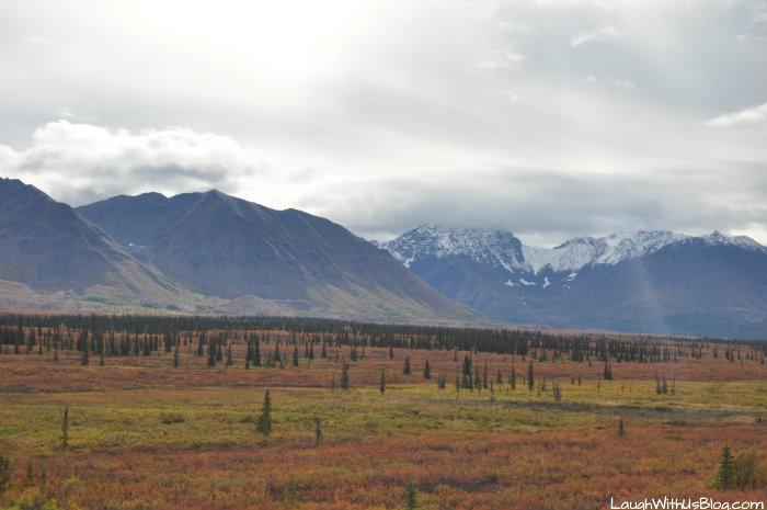 Travel Alaska 5