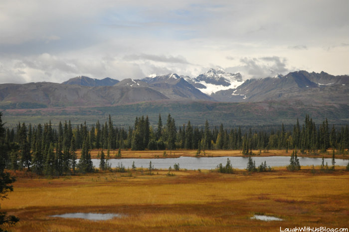 Travel Alaska 8
