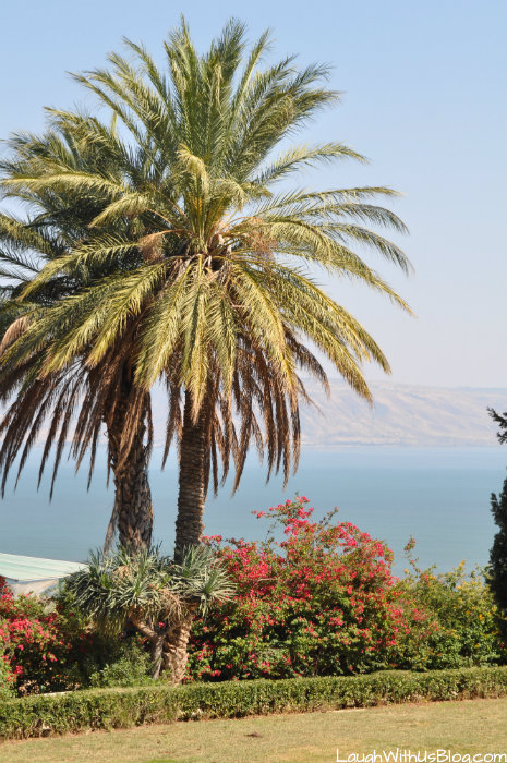 Gorgeous Scenery Israel Sermon on the Mount #IsramIsrael