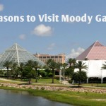 10 Reasons to Visit Moody Gardens this summer!