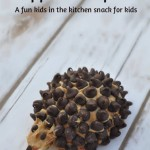 Apple Porcupine Snack for Kids