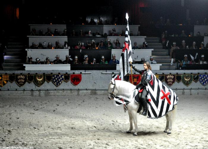 Medieval Times Knight #MtDallas #mtfan photo shoot