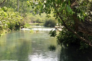 Banias Nature Reserve–A Water Powered Flour Mill