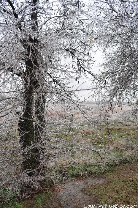 Oklahoma City Ice Storm