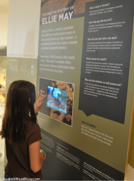 Perot Museum Solving the mystery Ellie May