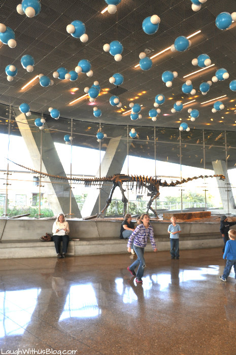 Perot Museum entry way ceiling