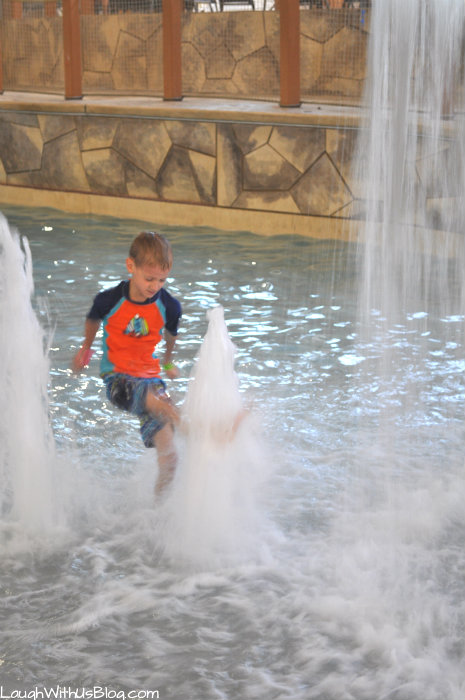 Great Wolf Lodge Water Park fun